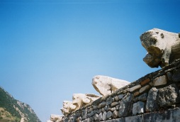 ancient bulls
