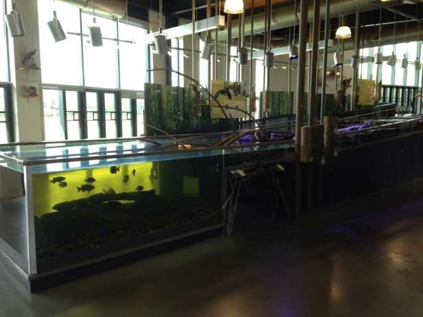 battelle-living-stream-exhibit