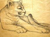 Big Cat, pen & ink on brown grocery bag, ca. 1971, Timi Townsend, all rights reserved, private collection of Christopher Townsend, Fairfield Connecticut