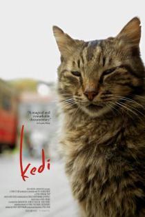 Kedi DVD cover