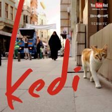 kedi film photo 2