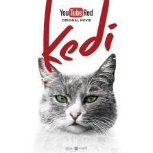 kedi film photo 4