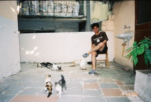 sevket and kitties in the courtyard