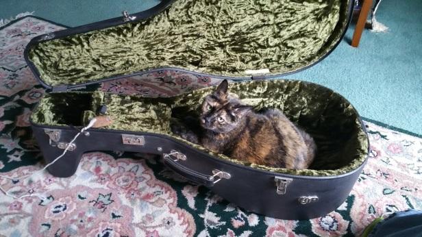 Ophelia lute cat.jpg