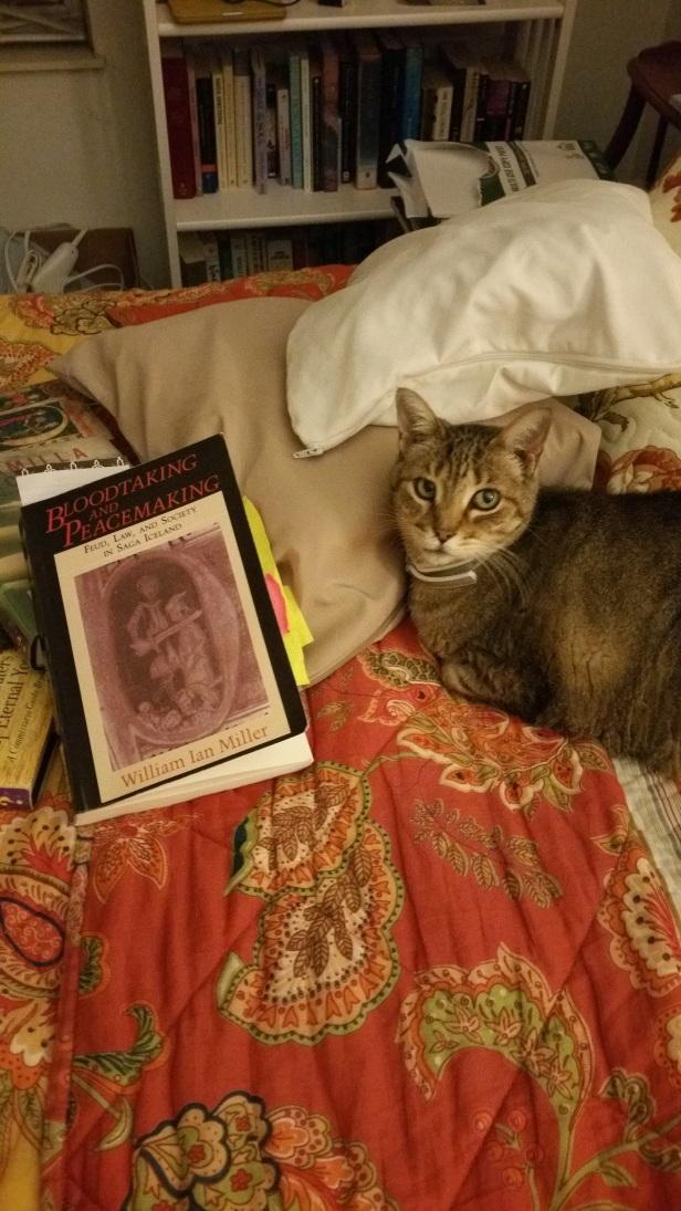 Sissy and Icelandic Saga textbook