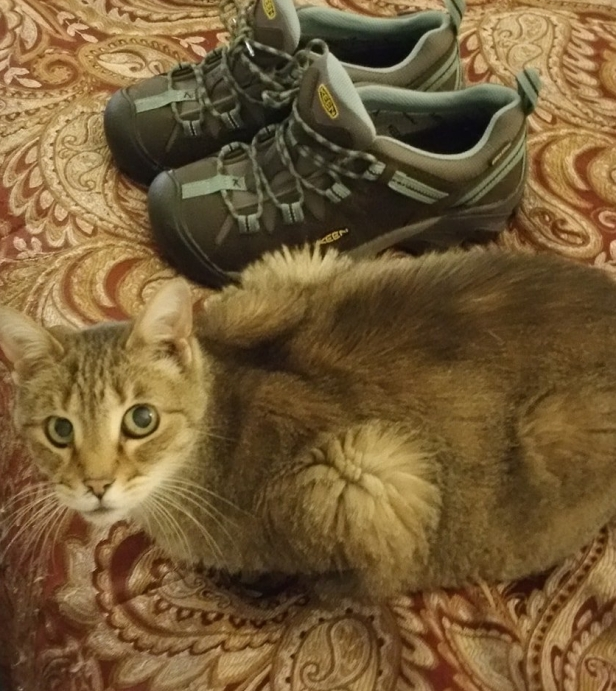 Sissy and new hiking boots, Dec. 2018